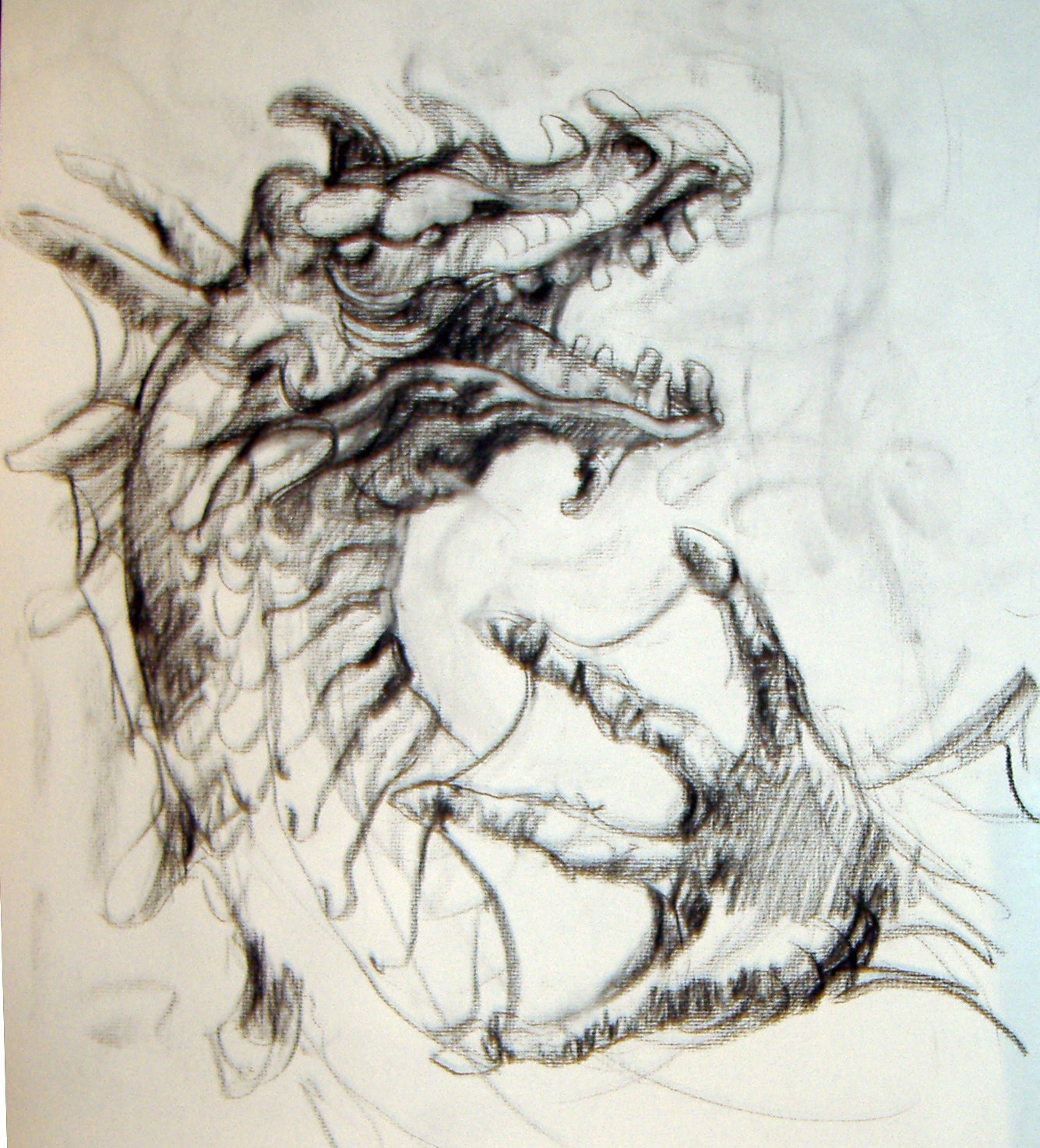 Realistic Dragon Drawings The drawing in vine charcoalDrawings Of Dragons Realistic