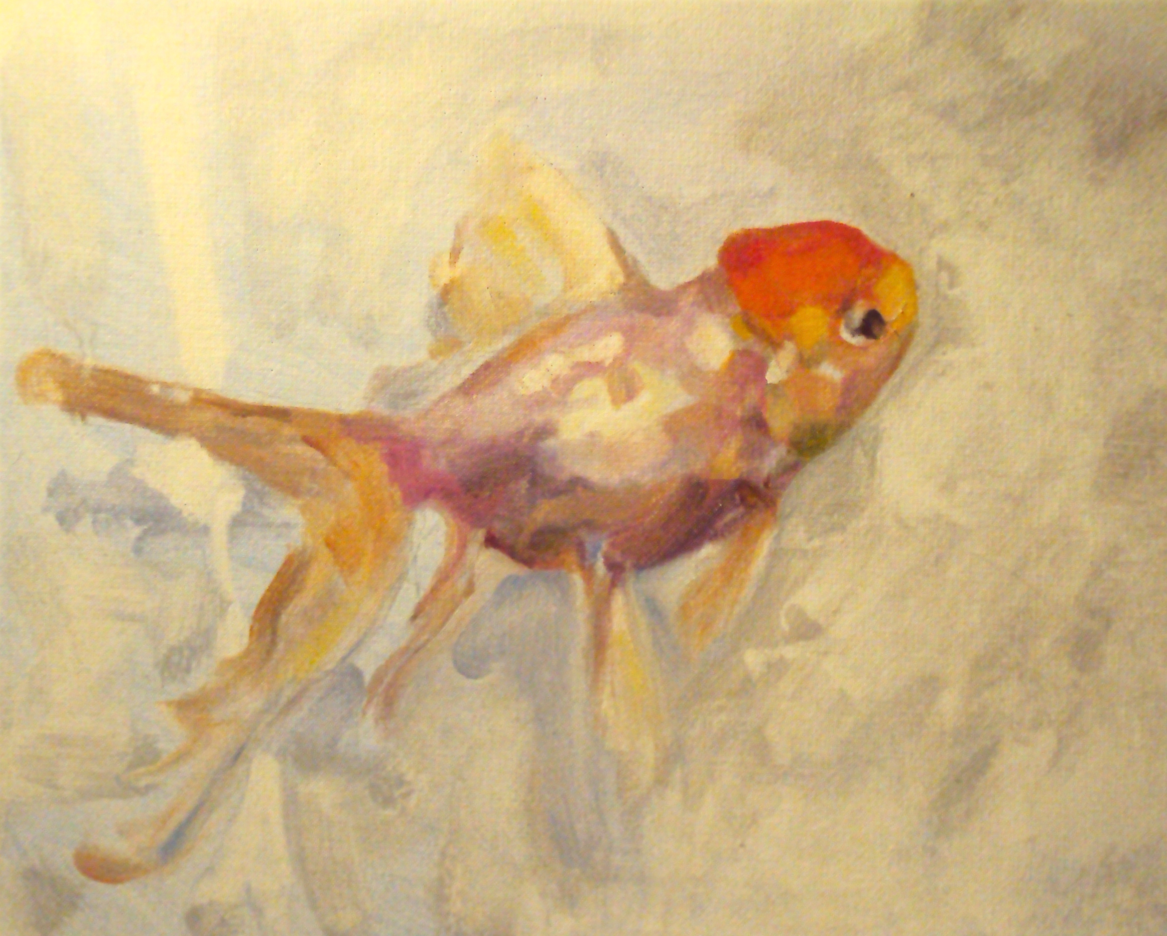 Painted Goldfish